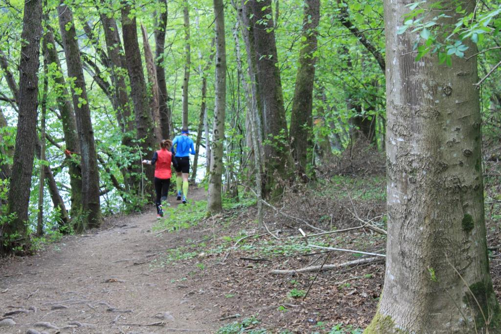 Tolle Trails führen rund um den Levico-See, auf der Ostseite flach, auf der Westseite rauf und runter. (Foto: sic)